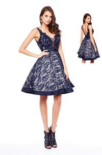 A-Line Mini V-Neck Sleeveless Lace Deep-V Back Dress
